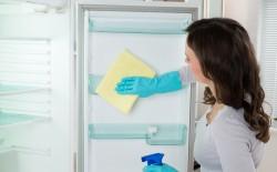 Чистый холодильник в подарок
